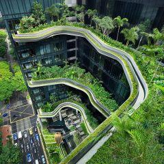 Огромный сад на фасаде здания в Сингапуре