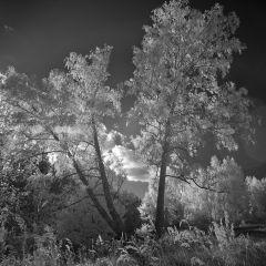 Фотографии Андрея Ермолаева