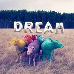 Разноцветные овечки