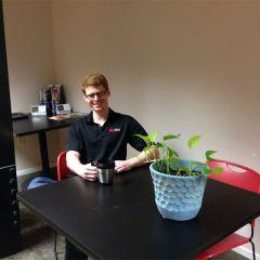 Как нужно ухаживать за растением