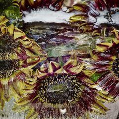 Замороженные цветы дают эффект акварели