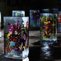 Цветы Makoto Azuma