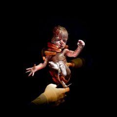 Фотографии новорожденных детей Christian Berthelot
