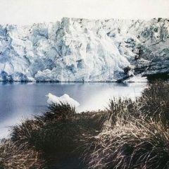 Антарктида в 1915 году