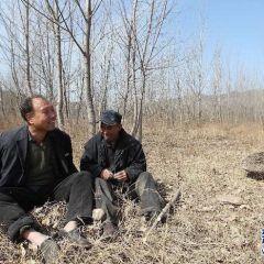 Два друга-инвалида сажают деревья вокруг своей деревни уже 12 лет