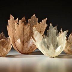 Невесомые вазы Kay Sekimachi
