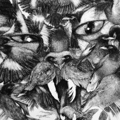 Гибриды животных Liam Gerrard