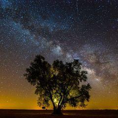 Звездное небо в фотографиях João P. Santos