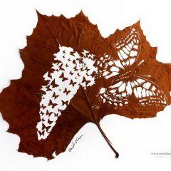 Резьба по листьям Omid Asadi