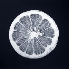 Невероятно реалистичные рисунки Romulo Celdran