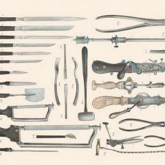 Анатомия XIX века в книге Richard Barnett