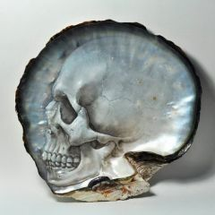 Вырезанные перламутровые черепа Gregory Halili