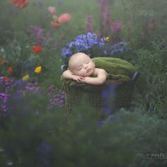 Спящие дети в снимках Noelle Mirabella