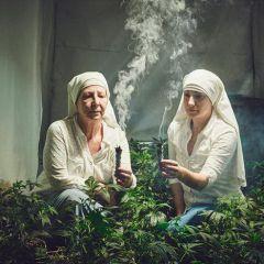 Выращивающие дурь: фотопроект Shaughn Crawford и John DuBois