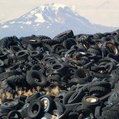 Переработка отходов: прибыльный бизнес и экологическая польза