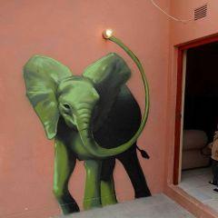 Граффити-слоны художника Falko one