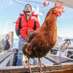 Моряк и его лучшая подруга: история Guirec Soudée