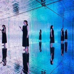 Красивая инсталляция в Токио