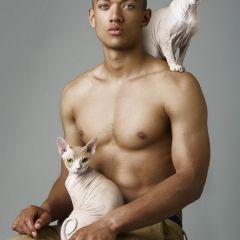 Фотографии обнаженных мужчин и котиков Michelangelo Cecilia