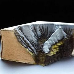 Книжные долины: скульптуры Guy Laramee
