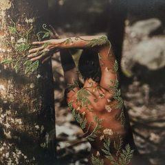 Вышитые фотографии Aline Brant
