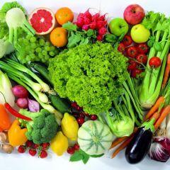 Правильное питание: путь к здоровью организма