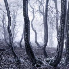 Зима в фотографиях Kilian Schonberger
