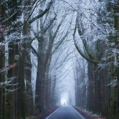 Одно и то же место в разные сезоны: фото Albert Dros