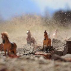 Игрушки как реальность: фотопроект Justina Liuse